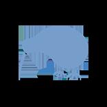 Blue Kiwi blog
